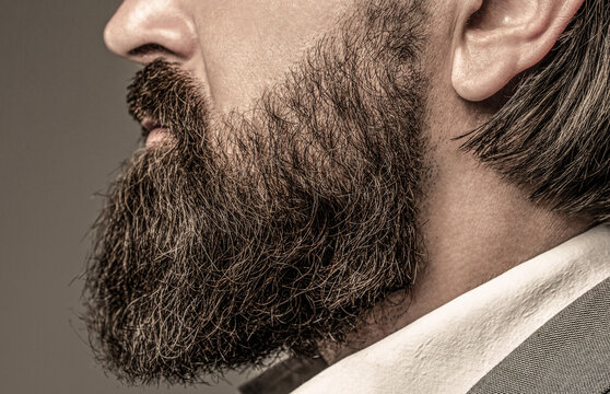 Beard is his style. Bearded man close up. Perfect beard. Close-up of young bearded man. Close up of handsome beard hipster elegant male