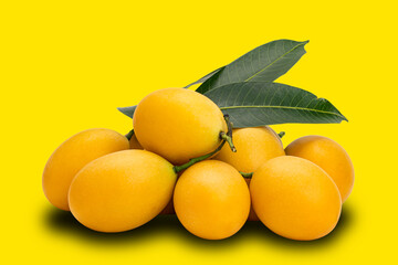 Fototapete - Pile of ripe marian plum with leaves on yellow background with clipping path. Freshly harvested ripe sweet yellow marian plum fruit pile on yellow background.