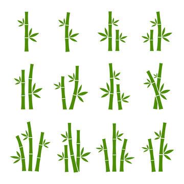 Green bamboo set vector images