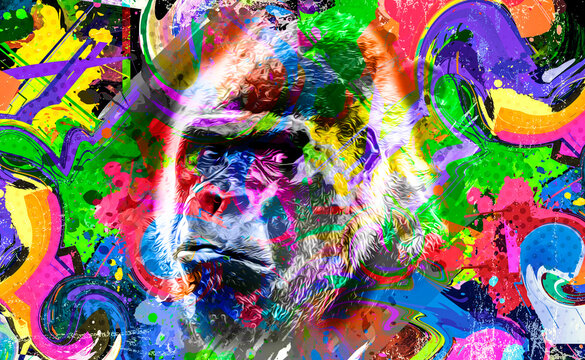close up of a color background and white gorilla