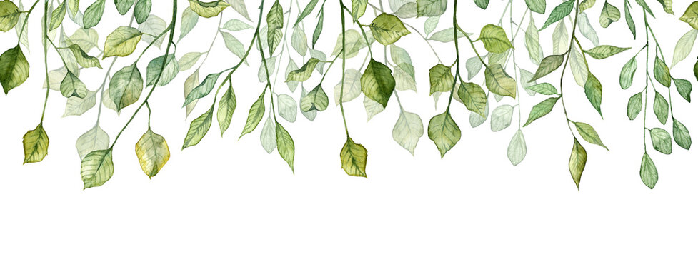 Seamless long banner with twigs and green leaves. Watercolor hand painted