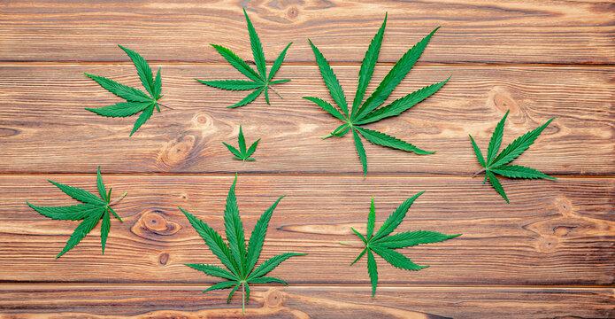 Cannabis leaf Weed ganja green hemp leaves on dark brown wooden background. Medical marijuana plant Cannabis Sativa. Weed legalize smoking drug concept. Long web banner Top view