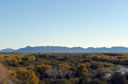 View over Yuma, Arizona