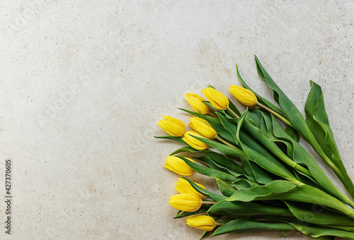 Yellow tulips on light stone background. Spring, holidays, mother's day, easter - poster with free text space.