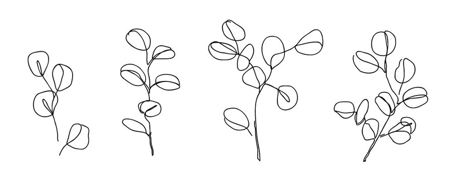 Set of Eucalyptus branches in modern single line art style. Continuous line drawing, aesthetic contour for home decor, posters, wall art, cards, packaging. Floral logo or icon vector illustration