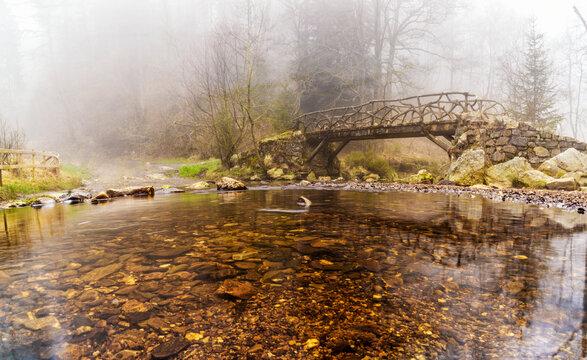 Moorwasser vor dem Beginn der Gefällestrecke in der Hoegne im Deutsch-Belgischen-Naturpark
