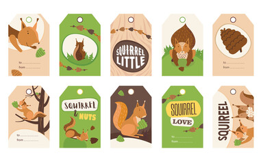 Fototapeta Stylish special tag designs with cute cartoon squirrel character. Orange or brown little mammal holding nut, smiling, sitting. Wildlife, nature concept. Template for greeting labels or invitation card