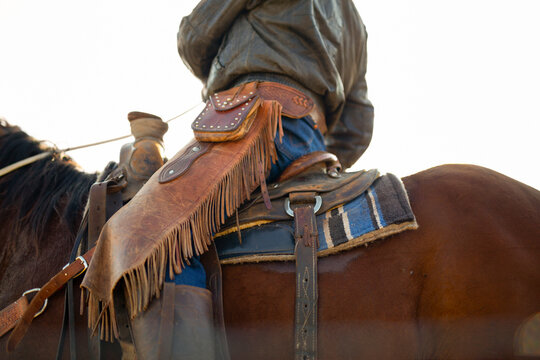 Low angle view of man on horse