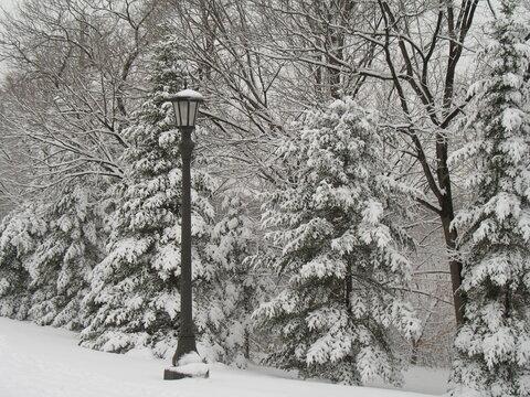 Lightpost in snow