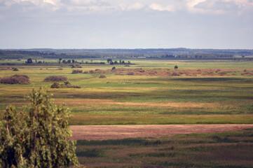 Krajobraz przyroda widok na polanę z dalekiej perspektywy