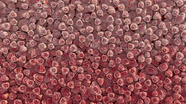 Bright, Elegant Flower Blooms arranged in the shape of a wall. Beautiful, Romantic, Roses composed to create a Red floral background. 3D Render