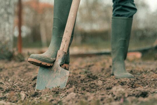 Farmer in rubber boots using spade gardening equipment in garden