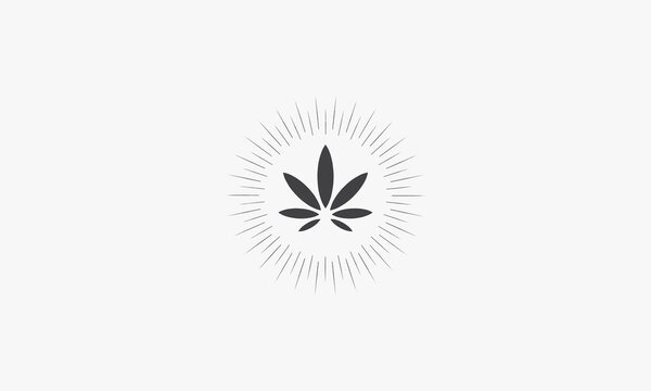 rays cannabis vector illustration on white background. creative icon.