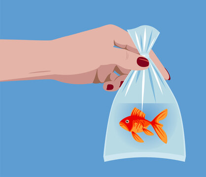 Female hand holding a goldfish in a plastic bag with water