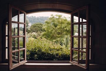 Fototapeta Plants Growing In Yard Seen Through Window Of House