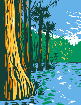 WPA Poster Art of the subtropical wetlands in Everglades National Park in the state of Florida done in works project administration style  or federal art project style.