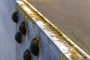 Macro Shot Of The Metal Edge Surface Of A Pillar Bridge With Protruding Rivets And Moss Covered On