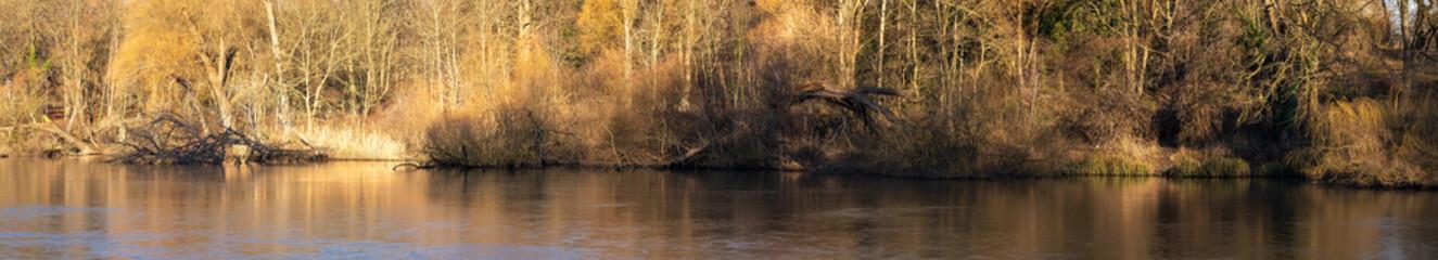 Panorama brzegu jeziora w jesienne popołudnie