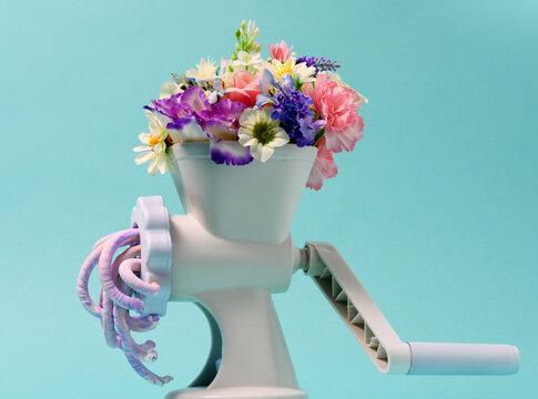 Floral colors