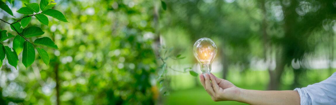 Light bulb Energy saving green nature background