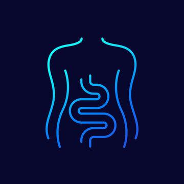 Intestines, colon line icon on dark