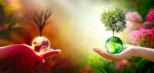 Fototapeta Earth Day or World Environment Day concept. Save our Planet and forest, restore and protect green nature, global warming and Climate change. Live and dry tree and globe in human hand, choosing future.