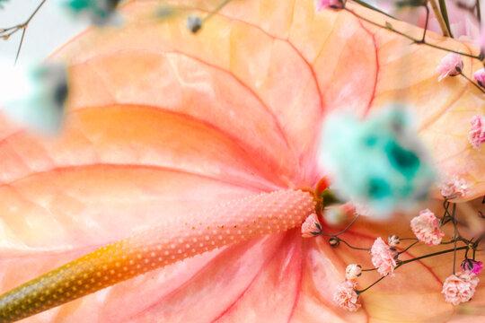 Spring bouquet bokeh
