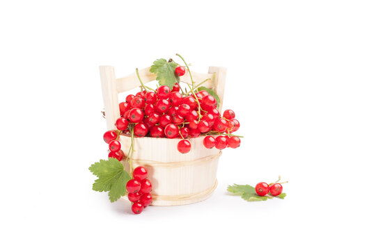 Red berries in a basket