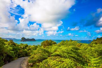 De weg naar Cathedral Cove