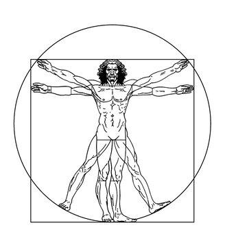 Vector vitruvian man illustration