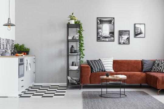 Black metal bookshelf in grey Scandinavian living room interior with brown velvet sofa