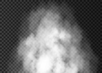 Obraz Realistic Fog Smoke Vape Cloud Effect Isolated Transparent Background Shapes Powder cigarette waves Wind. - fototapety do salonu