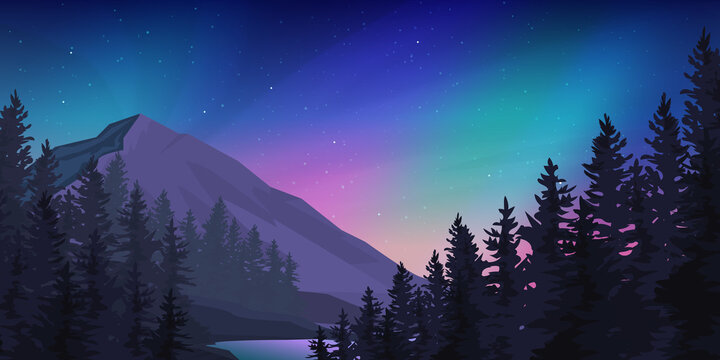 Mountain forest at the northern lights landscape.