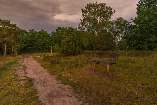 A bench with a view at the evening landscape of the Lueneburg Heath near Oberhaverbeck, Lower Saxony, Germany