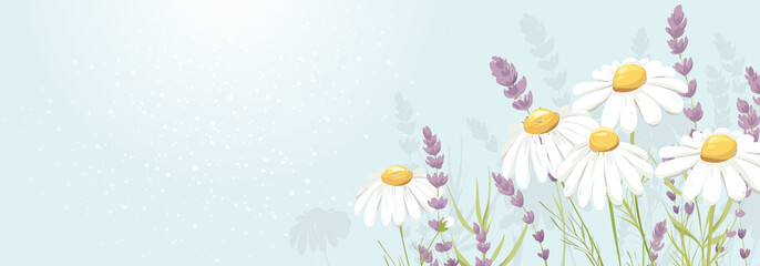 Summer banner with bouquet. Birthday, Wedding or Mothers Day illustration. Vector design element, lavender and chamomile, medicinal herbs.