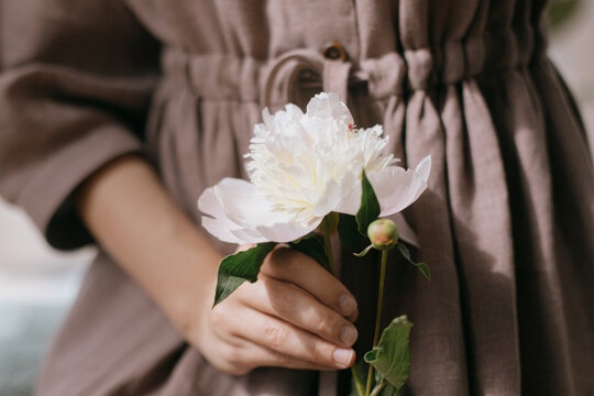 Stylish woman in linen dress holding white peony in sunny light. Slow life. Aesthetic moment