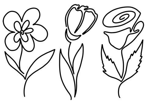 Hand drawing and sketch flower with line art illustration.