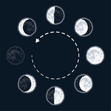 nine moon phases set