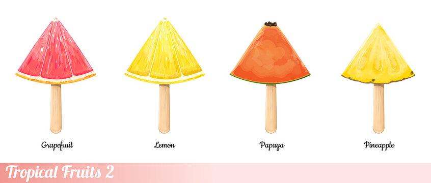 Tropical Fruit Slices. Part 2. Vector Illustration.