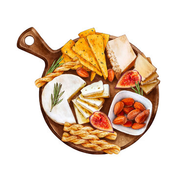 Cheese plate. Watercolor cheese snack on wooden board. Blue cheese, parmesan, bread sticks, almonds, bacon isolated on white background. Hand painted watercolor hand drawn illustration. Food