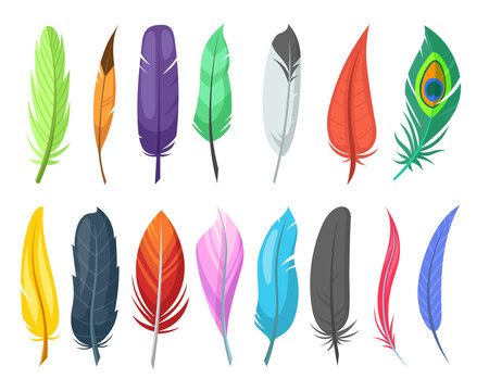 Shiny feathers of birds flat vector illustrations set. Variety of colorful quills, ostrich feathers isolated on white background. Birds, nature, decoration concept