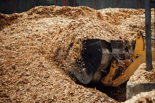 the excavator loads wood chips. the large bucket of the conveyor loads biofuels and wood mulch. industrial bulldozer is engaged in unloading slag
