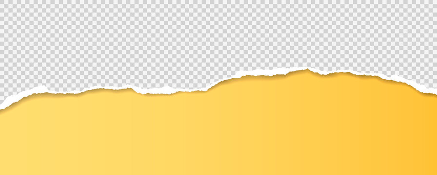 Torn, ripped squared paper strip with soft shadow is on yellow background for text. Vector illustration