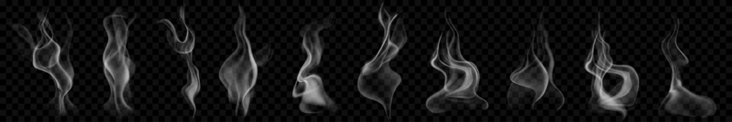 Obraz Set of several realistic transparent smoke or steam in white and gray colors, for use on dark background. Transparency only in vector format - fototapety do salonu