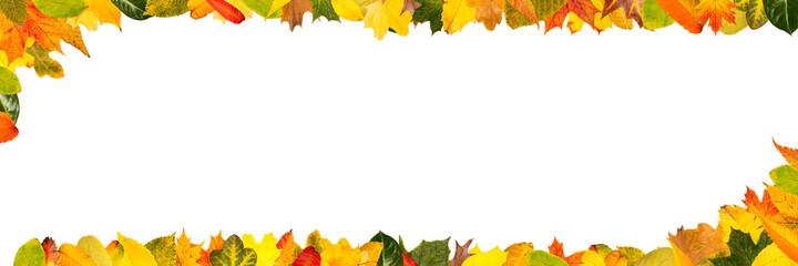 Fototapeta Buntes Herbst Laub als Rahmen für Header Banner