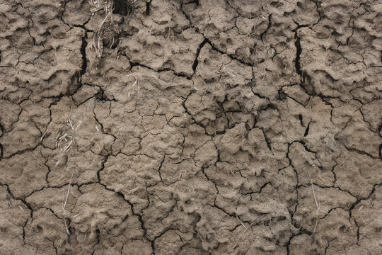 Texture of the dried earth with clay and sand. Close-up. Cracks in the soil surface.