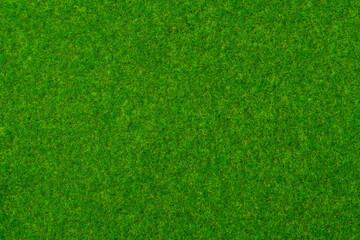 Fototapeta 芝生、苔の背景テクスチャー