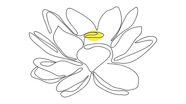 Lotus flower line art. Minimalist contour drawing, isolated on white background