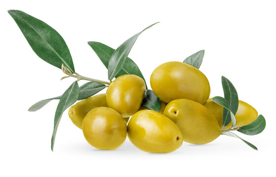 Heap of green olives with branch isolated on white background with clipping path.