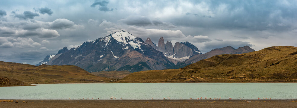 Flamingos at Nordernskjöld Lake and the peaks in Torres del Paine National Park, Chile